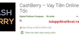 cashberry min