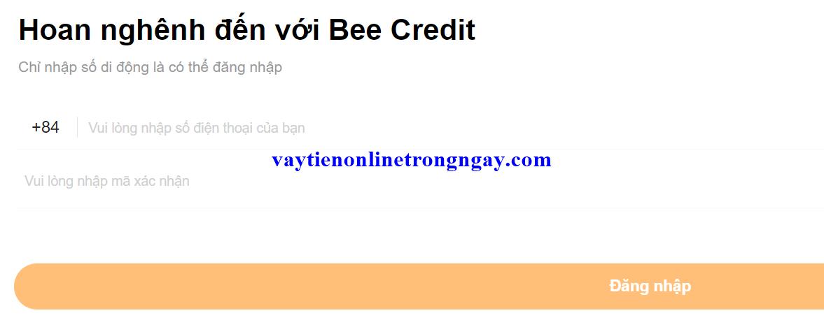 bee credit 1